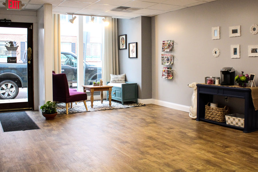DowntownDogGrooming-Interior-2