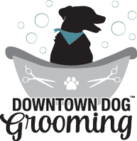 DowntownDogGrooming-Logo_color-black