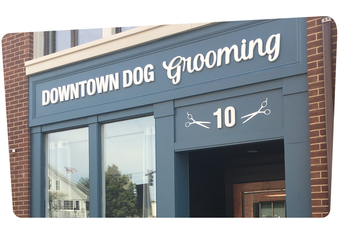DowntownDogGrooming-HomeBanner-1